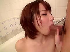star korean porn
