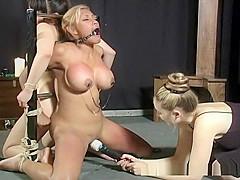 hewitt big love booty Jennifer